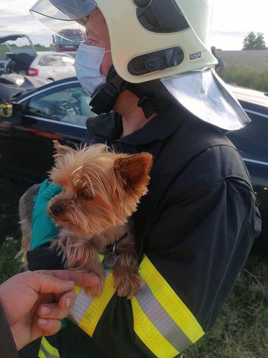 U Smečna se srazila tři auta. Hasiči zachránili psa