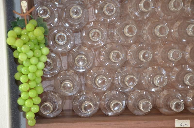Vinobraní ve Kvíci u Rychtaříků.