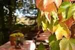 Podzim na Kladensku hraje mnoha barvami.