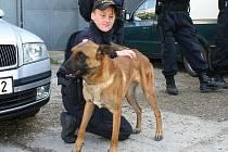 Díky domluvě vedení kraje s vedením policie mohou nakonec služební policejní psi v Kladně zůstat