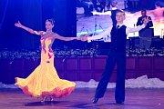 Veřejnost na plese bavila pěvecká esa Karel Gott, Jitka Zelenková či Jan Smigmator.
