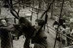 Děti sledující krmení či péči o makaky.