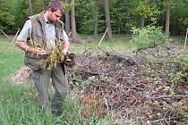 Viktor Veselý s kusy vytrhaných a posekaných dřevin