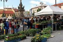 Produkty českých pěstitelů si dnes zákazníci mohou zakoupit na trzích na náměstí Starosty Pavla v Kladně.