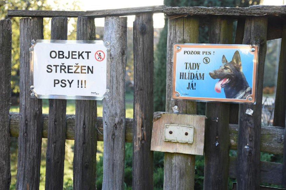 Majitelka žije se psy v tomto domě. Pod plotem z planěk se snadno podhrabou. Oplocení proto ještě více zabezpečila. Utíkat už by prý neměli.
