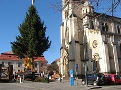Na náměstí Starosty Pavla v Kladně dorazil strom v pondělí dopoledne.