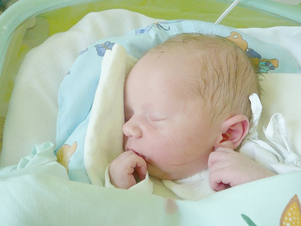 František Šnajdr, Kladno. Narodil se 7. srpna 2014. Váha 3,27 kg, míra 51 cm. Rodiče jsou Martina a Jan Šnajdrovi (porodnice Kladno).