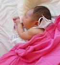 KLAUDIE QUERZOLA, PRAHA. Narodila se 6.června 2017. Váha 3,3 kg, výška 48 cm. Rodiče jsou Lenka Querzola a Sebastian Querzola (porodnice Kladno).