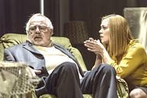 V inscenaci Otec/Matka se v hlavních rolích představili herci Šárka Opršálová, Marie Štípková či Alena Štréblová.