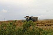 Žně na Kladensku. Na snímcích sklizeň obilí na poli u Hořešovic a u Šlapanic. Stroje jedou naplno a někdy stačí jen malá jiskra a shoří celý lán.