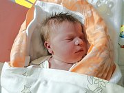 ELENA KNOTKOVÁ, LOUNY. Narodila se 20. ledna 2018. Po porodu vážila 3,69 kg a měřila 51 cm. Rodiče jsou Kristýna Petrlíková a Aleš Knotek. (porodnice Slaný)