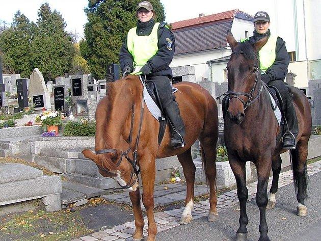 Jízdní oddíl na koních  je především reprezentativní složkou Městské policie Kladno. Někteří lidé ale strážníky v sedlech zvířat nevidí rádi například na cyklostezkách.