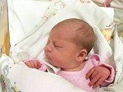 ADÉLA MELOUNKOVÁ, TŘEBÍZ. Narodila se 13. prosince  2017. Po porodu vážila 3,70 kg a měřila 51 cm. Rodiče jsou Martina a Jan Melounkovi. (porodnice Slaný)