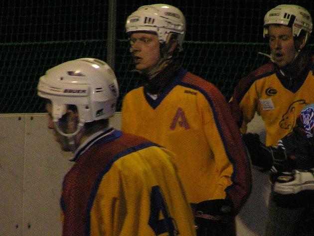 Jungle Fever přehráli ve druhé lize poslední Mladou Boleslav, ale v Jindřichově Hradci těsně prohráli.