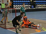 Nosorožci - Medvědi 4:1, semifinále / ŠFL Kladno Play off / 13. 5. 2017 / BIOS Kladno