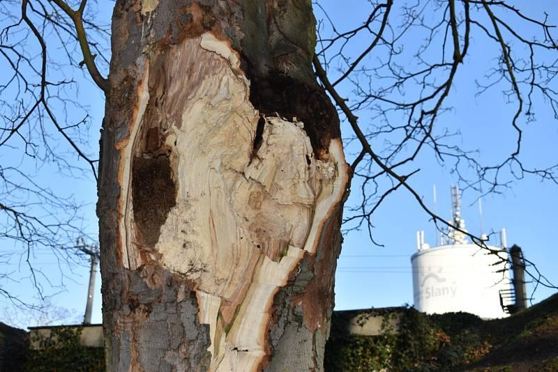 I v úterý padají stromy a vítr trhá střechy.
