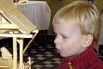 Tradiční vánoční výstavu pořádají do soboty členové Českého zahrádkářského svazu ze základní organizace Kladno – zahrádkářské kolonie v Podprůhonu.