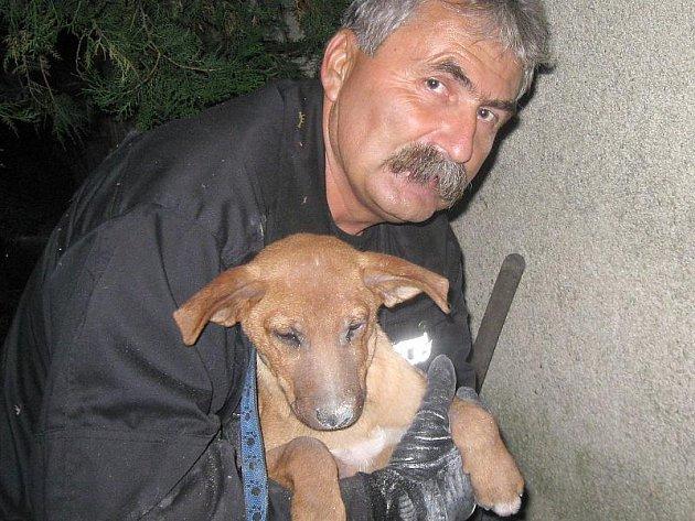 Jednomu ze strážníku se podařilo psa vysvobodit.