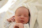 BERENIKA RUSOVÁ, KLADNO. Narodila se 17. prosince 2017. Po porodu vážila 3,43 kg a měřila 50 cm. Rodiče jsou Kateřina Rusová a Vít Rus. (porodnice Kladno)