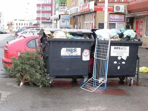 Stromečky putovaly k popelnicím.
