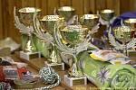 Agility - halové závody Kladno 14.-15.2.2009
