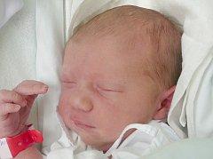 Karolínka Černá, Braškov-Valdek. Narodila se 4. září 2016. Váha 3,10 kg, míra 49 cm. Rodiče jsou Michaela a Lubomír Černých (porodnice Kladno).