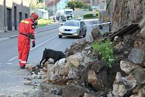 Pod zborcenou zdí hledali v červnu případné zavalené lidi i psovodi z pražských Klánovic