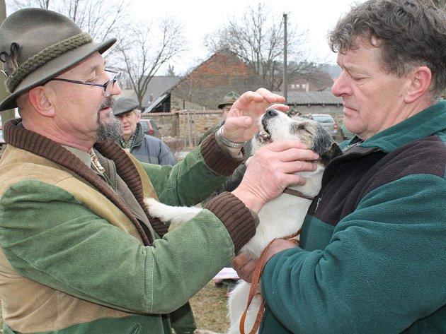 Okresní myslivecká výstava v Žilině 2013 spojená s jarním svodem psů