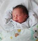 KLÁRA WACHAUFOVÁ, OTVOVICE. Narodila se 15. dubna 2017. Váha 2,97 kg, míra 48 cm. Rodiče jsou Klára Sedmidubská a Roman Wachauf (por. Kladno).