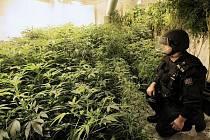 Velkokapacitní pěstírnu marihuany odhalili policisté v Unhošti v areálu někdejšího pivovaru