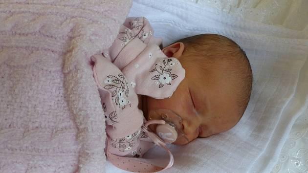 Anna Wertheimová se narodila 18. prosince 2020 v kolínské porodnici, vážila 3550 g a měřila 52 cm. V Sadské se z ní těší bráškové Roman (8), Antonín (7) a rodiče Anna a Roman.