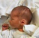 JIŘÍ NEVRLA, LOUNY. Narodil se 3. června. Váha 2,64 kg, míra 48 cm. Rodiče jsou Štěpánka Machavová a Jiří Nevrla (porodnice Slaný).
