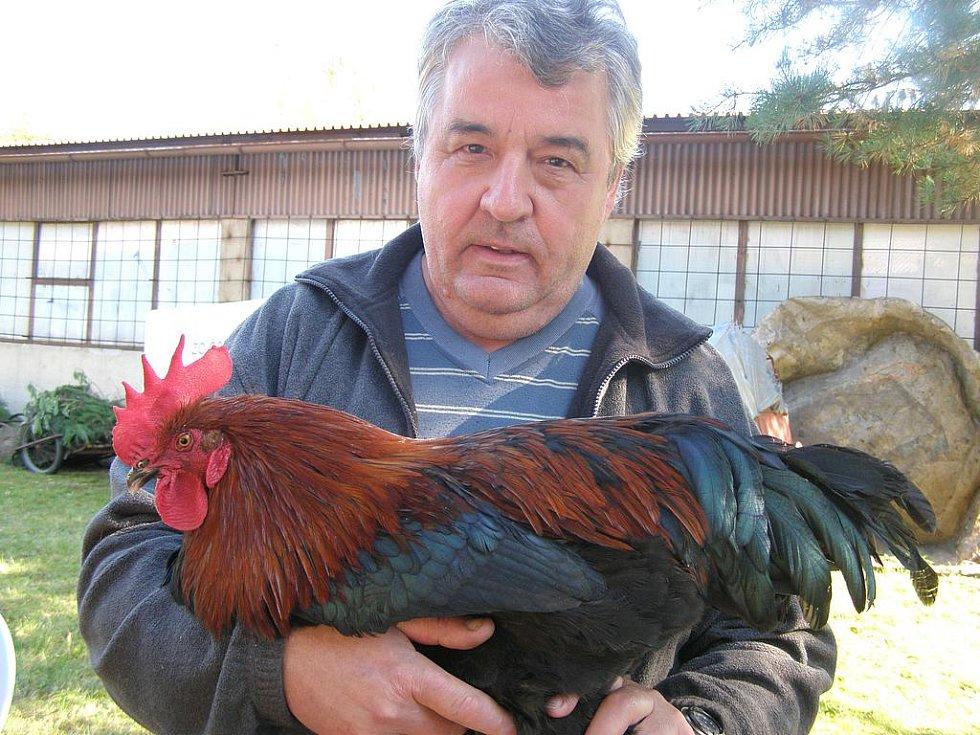 Petr Albrecht ze Srb zde měl v Rozdělově vystaveny kohouty a slepice maransky. Jejich zvláštností je, že snášejí hnědočervená vejce. Na Velikonoce je tudíž není potřeba barvit.
