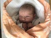 TEREZA VANĚČKOVÁ, LIBOVICE. Narodila se 21. května 2019. Po porodu vážila 2,8 kg a měřila 49 cm. Rodiče jsou Lucie Vystrčilová a Miroslav Vaněček. (porodnice Slaný)