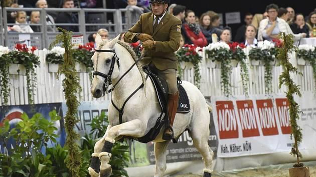 Královice přivítají mezinárodní šampionát.