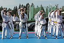Keiko-ryu Shotokan.