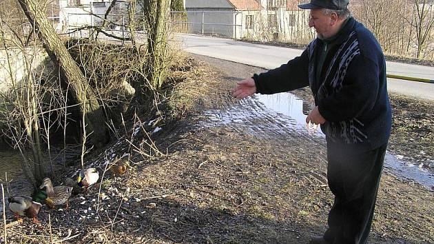 LIDÉ V DOKSECH život kolem vody milují. K malému rybníku chodí rádi krmit kachny. Další plochu by v obci uvítali.