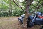 Muž chtěl nárazem do stromu ukončit svůj život.