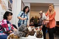 Krajský úřad Středočeského kraje na pražském Smíchově ve středu hostil tradiční prodejní výstavu vánočních dekorací a dalších výrobků vytvořených klienty domovů seniorů a dalších provozovatelů sociálních služeb.