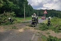Strom při pádu poškodil elektrické vedení, zároveň zablokoval silnici číslo 101.
