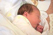 Hana Frolíková, Třebíz. Narodila se 28. října 2017. Váha 2,6 kg, výška 48 cm. Rodiče jsou Helena Frolíková a Ondřej Frolík. (porodnice Slaný)