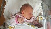 ELIŠKA ŠVADLENKOVÁ, SLANÝ. Narodila se 30. října 2018. Po porodu vážila 2,85 kg a měřila 49 cm. Rodiče jsou Sabina Švadlenková a Jakub Bokovský. (porodnice Slaný)