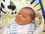 BRYAN BARTOLOMĚJ GIRGA, SLANÝ. Narodil se 9. prosince  2017. Po porodu vážil 4,12 kg a měřil 54 cm. Rodiče jsou Adriana Girgová a Dominik Dubský. (porodnice Slaný)