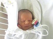 ALBERT KOUDELKA, KLADNO. Narodil se 23. října 2018. Po porodu vážil 3,69 kg a měřil 51 cm. Rodiče jsou Ida Koudelková a Petr Koudelka. (porodnice Kladno)