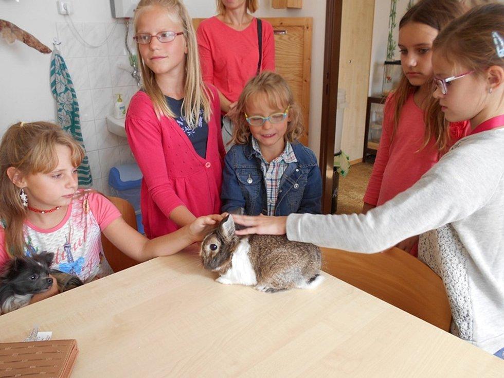 Slánský Dům dětí a mládeže Ostrov si mohli zájemci prohlédnout v rámci dne otevřených dveří.