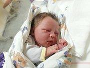 FRANTIŠEK ANTONÍN CHALOUPKA, KLADNO. Narodil se 6. ledna 2018. Po porodu vážil 4,05 kg a měřil 53 cm. Rodiče jsou Jaroslava Chaloupková a Antonín Bareš. (porodnice Slaný)