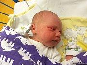 SEBASTIAN TŘEŠŇÁK, KRALUPY NAD VLTAVOU. Narodil se 13. prosince  2017. Po porodu vážil 3,65 kg a měřil 49 cm. Rodiče jsou Lucie a Stanislav Třešňákovi. (porodnice Slaný)