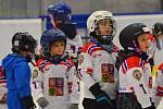 Týden hokeje má Kladno za sebou, přišlo 65 nových dětí! Ty vedli i zkušení trenéři, bývalí extraligoví borci, i krasobruslařky.