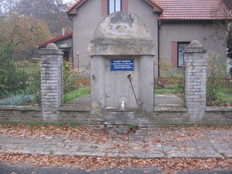 Slaný pramen se nachází v Nezamyslově ulici ve Slaném.