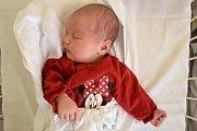 ANNA FIALOVÁ, DOKSY. Narodila se 13. listopadu 2018. Po porodu vážila 3,8 kg a měřila 51 cm. Rodiče jsou Kristýna Bohovicová a Vít Fiala. (porodnice Kladno)